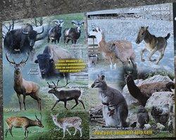 Le flyer du parc animalier