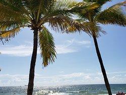 walk on the beach Hilton beach resort