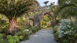 Tresco Abbey Garden & Valhalla Collection