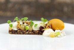 Müsli-Dessert mit Joghurt / Zitrone / Sanddorn / Anis