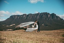 Weddings and Elopement Packages Available
