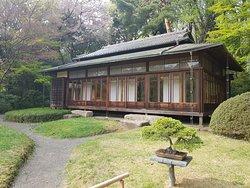 Το πανεμορφο Tea House με το Bonzai απο εξω!