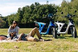 Enjoy a picnic