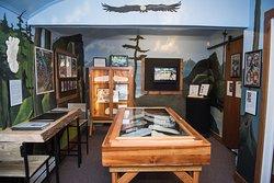 Inside of the Sasquatch Museum