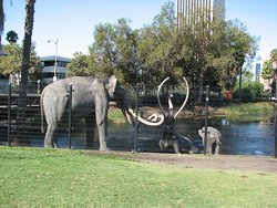 Right outside the museum, the replicas of mammoths trapped in the tar pits