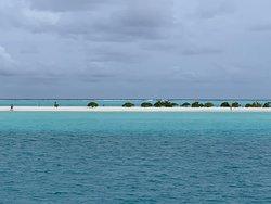 La lingua di sabbia vista dalla barca dei trasferimenti