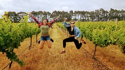Explore the wineries of Margaret River