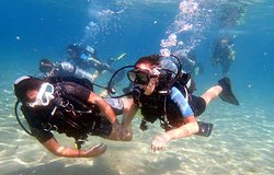Ocean Diving Center