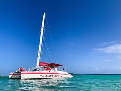 Salty Dog Catamaran