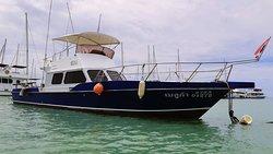 Beluga Fishing Tours