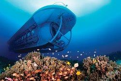 Atlantis Submarines Kona