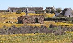 Matjiesfontein Farm