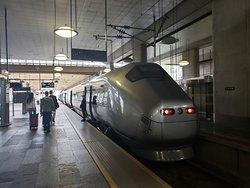 Flytoget train at Oslo Lufthavn Stasjon