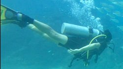 the magical feeling of scuba diving
