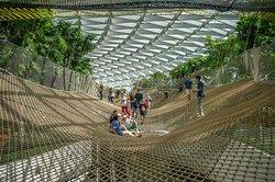 Jewel Canopy Park