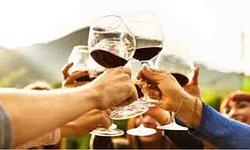 Oeno Winemaking