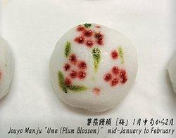 """薯蕷饅頭 [梅」 1月中旬から2月 Jouyo Manju """"Ume (Plum Blossom)"""" mid-January to February"""