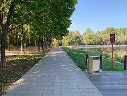 Park u Golovinskikh Prudov