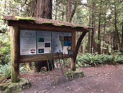 Cape Flattery Trail, walking stickers at the entrance.