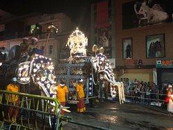 festival de la dent du Buddha à Kandy