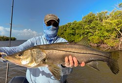 As big a snook as you can keep. Great eating