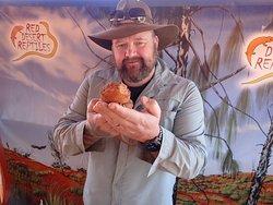 Red Desert Reptiles