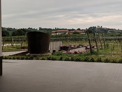 A wine cathedral in beautiful countryside