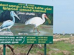 Water Bird Sanctuary