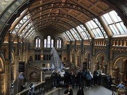 広い、新旧混在した博物館