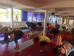 Hatha yoga morning classes at Yogadarshan, March 2019