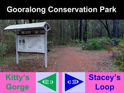 At the start on Atkins Road Jarrahdale opposite the Cemetery, Stacey's Loop heads right and follows the Blue Triangle Boot Markers. Kitty's Gorge Trail heads left and follows the Green Triangle Boot Markers.