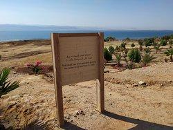 Relax sul Mar Morto