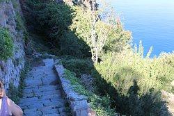 je dirai que c'est le début d'un chemin de randonnée, « les terrasses et la marine ». A savoir que l'accès pour ce sanctuaire n'est pas possible pour une personne handicapée. De plus, l'accès n'est pas facile car celui-ci est entouré de verdures et il y a beaucoup de marches