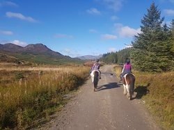 Highland pony trekking at its best