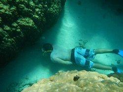 Shark Cave.