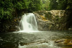 Stay comfortable and have a great trekking through the world heritage SINHARAJA FOREST