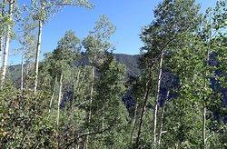 American Lake Trail - Weg hinauf - Aussicht