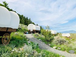 5 wagons in the upper Conestoga Camp