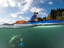 Exotic Aquatics Scuba & Kayaking