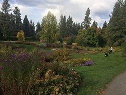 Ferris Perennial Garden