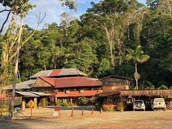 Good budget option to experience the lowland rainforest