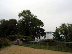 Das ist oberhalb, vom Hafen-Gebiet, zu sehen... Lenin-Denkmal...