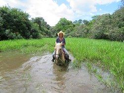 Getting wet in The Wetlands!