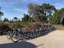 E-bike Tours / Team Buildings