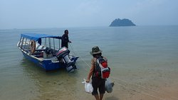 Going back from turtle island to Guest house