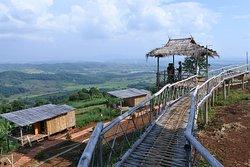 มีสะพานไม้ไผ่ให้เดินชมวิว