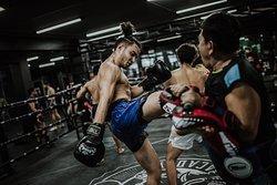 Professional training 15:00-17:00 on Monday-Saturday