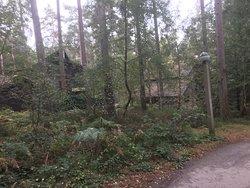 Lodges in centre parcs