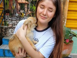 """Visit and support an animal shelter, this is our leading project. This shelter is called """"Hope for Pets"""" and was founded by a Cuban veterinary with her own efforts."""