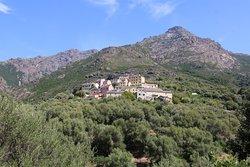 Ogliastro, c'est un village perché à 1,5 km de la mer, il se situe sur la départementale D233 en direction d'olcani.